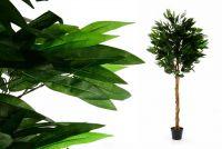 Umělá rostlina strom - mango - 180 cm