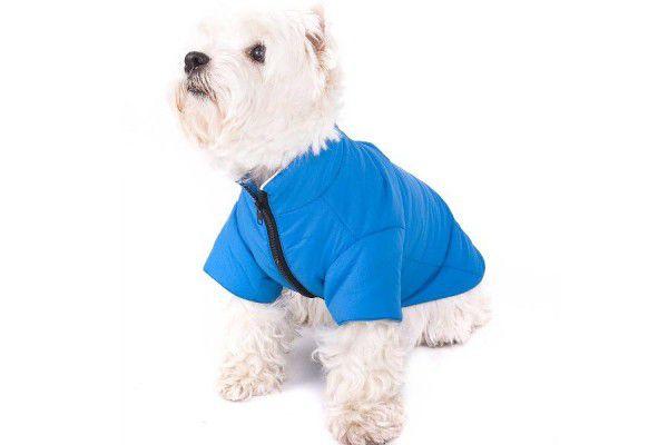 Psí obleček - modrý, velikost M